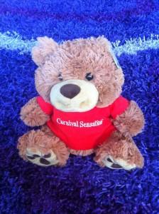 carnival sensation bear
