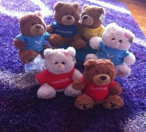 cruise ship bear family